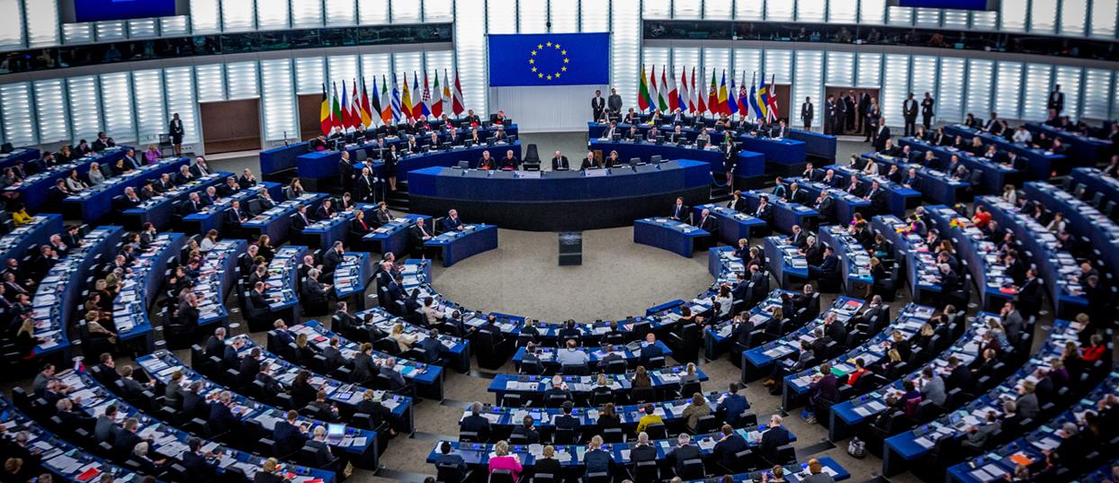 Qu'est-ce qu'un député européen ?